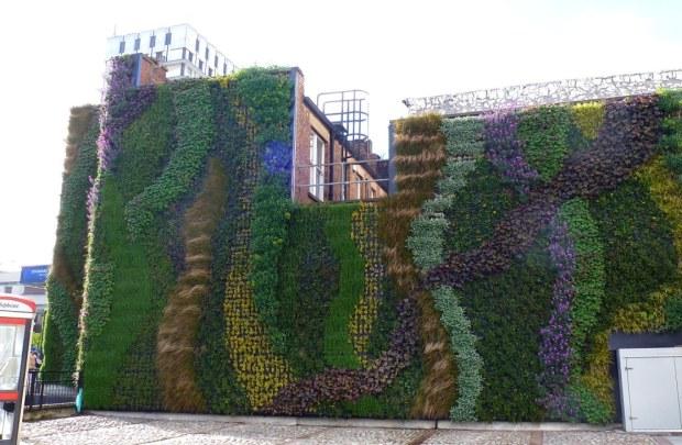 Green wall to reduce pollution, Marylebone Rd, London